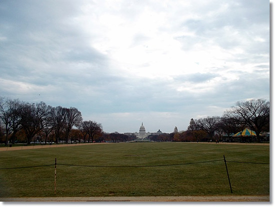 Washingtondc_046